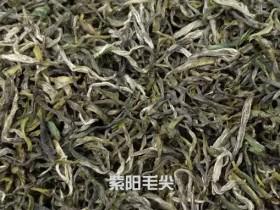 紫阳富硒毛尖茶叶哪里有卖?