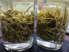 肠胃不好的人可以喝紫阳富硒茶吗?