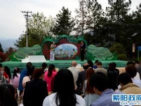 10万游客清明时节踏青紫阳 茶乡茶山对歌