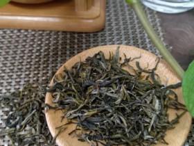 紫阳富硒茶和普洱茶哪个好?
