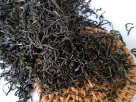 紫阳有古树茶吗