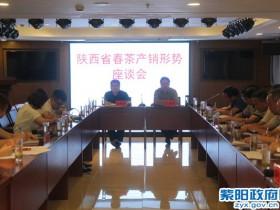 陕西省春茶产销形势座谈会在紫阳举行