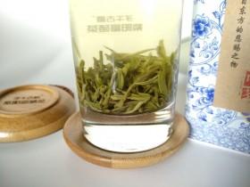哪种绿茶最耐泡