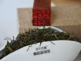 有机茶的种植标准和管理规范技术