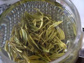 茶叶质量安全需要注意的问题