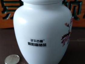 紫阳麻柳镇堰碥村为茶农送来致富经