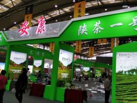 陕西紫阳县:提升茶叶品牌影响力 增强脱贫增收带动性