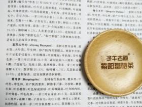 《中国茶叶大辞典》对紫阳蒿坪茶种的介绍