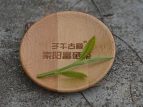 陕西日报:青青茶 袅袅舞——紫阳富硒茶产业创新转型升级发展调查