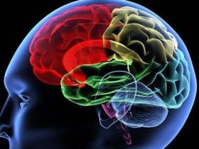 喝富硒茶对脑功能的好处