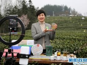 """紫阳县长陈莲变身网络""""主播""""在线推介紫阳富硒茶"""