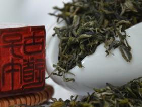 紫阳高山的蒿坪毛尖茶