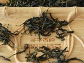 安康富硒茶主要产自哪里