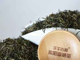 蒿稀毛尖和紫阳毛尖是同一种茶吗
