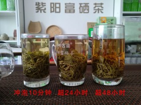 蒿坪毛尖富硒茶相同水质冲泡茶叶不同时长下的汤色对比