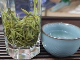 绿茶有哪些品种