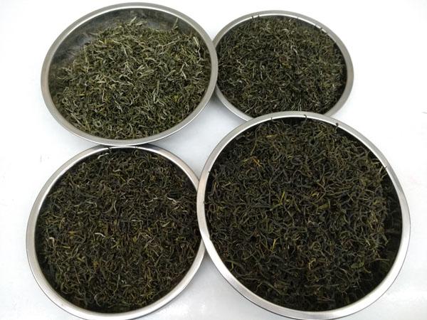 关于我们——紫阳老茶农富硒茶基地介绍