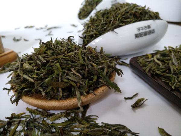 2019年紫阳富硒茶蒿坪毛尖老茶园开园茶开始预售
