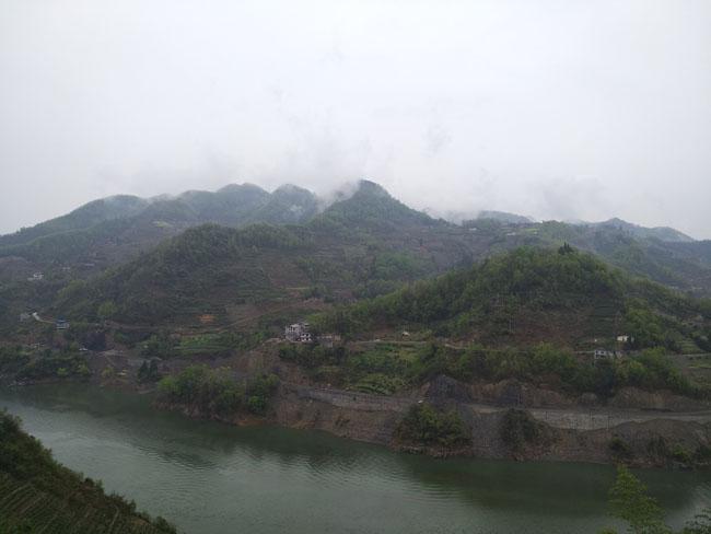 紫阳县焕古镇举行新型职业农民茶叶技能培训